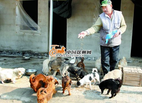 """""""魏师傅指着正玩耍的小动物说:""""猫咪小幸运刚出生不久就被人遗弃在"""